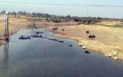 مطالعات احداث سازه سیفون معکوس رودخانه نیسان و سازه های وابسته به انحراف رودخانه