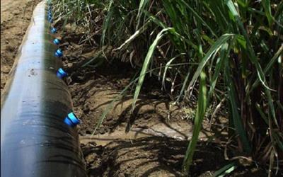 بازنگری مطالعات مرحله اول شبکه اصلی آبیاری و زهکشی مکسر اراضی ساحل راست رامشیر(مکسر) به وسعت 6 هزار هکتار