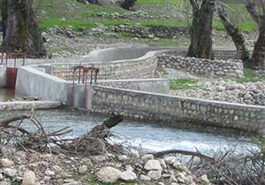 مطالعات، طراحی و نظارت بر اجرای پروژه 1000 تنی پرورش ماهیان سردآبی سربازار مسجد سلیمان